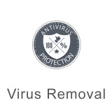 Virus Protection and Removal